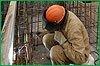 Органы службы занятости края содействуют временному трудоустройству пострадавших от наводнения