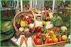 Хабаровский край принимает участие в агропромышленной выставке «Золотая осень-2013»