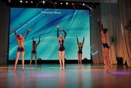 В Хабаровске подвели тоги развития отрасли физической культуры и спорта за 2013 год