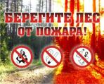 Туристам о пожарной безопасности в лесу