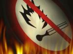 Как правильно себя вести, чтобы не стать причиной лесного пожара