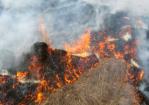 Не стань причиной лесного пожара