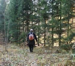 Позаботиться о своей безопасности в лесу – долг каждого!