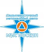 Дальневосточному региональному центру МЧС России – 22 года