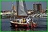 Яхтенный туризм может стать новым брендом Хабаровского края