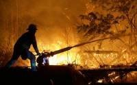За 8 сентября 2014г. на Дальнем Востоке ликвидировали 6 из 7 действующих лесных пожаров