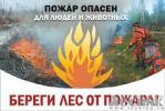 О пожарной безопасности в лесу