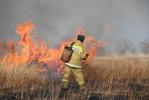 Пал сухой травы, может стать причиной серьезного пожара