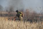 В Хабаровске растет количество выездов пожарных на тушение сухой травы