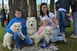 """Благотворительная акция """"Собака-обнимака"""", прошедшая в парке им. Гагарина"""