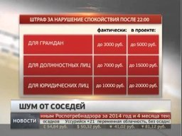 В Хабаровске рассматривают закон, позволяющий полиции штрафовать соседей, шумящих после 22:00