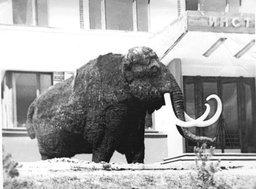 В августе 1979 года в Хабаровске проходил Тихоокеанский научный конгресс
