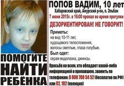 В поселке Эльбан Хабаровского края пропал мальчик