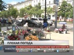 Синоптики обещают - лето в Хабаровске вот-вот начнется!