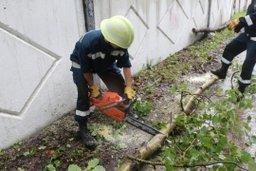 Спасатели Амурского спасательного центра принимают участие в ликвидации последствий циклона в Хабаровском крае