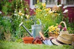 В Хабаровске создан общественный Совет садоводческих, огороднических и дачных некоммерческих объединений граждан