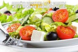 Высокотехнологичную теплицу для круглогодичного выращивания овощей построят в Хабаровске