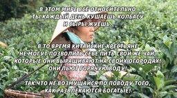 Внук хабаровского олигарха устроил БДСМ-фотосессию