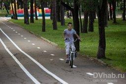 На Амурском бульваре нанесли велодорожку
