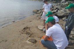 Хабаровские активисты вернули в природу краснокнижных кожистых черепах
