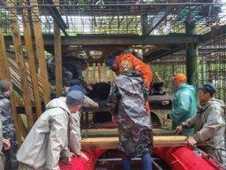 Операция по спасению зверей из подтопленного зоопарка Уссурийска завершена