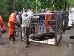 В Уссурийске будет построен новый зоопарк