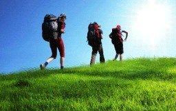 В Хабаровском крае появятся круизный и туристский кластеры
