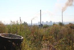Конкурс проектов по использованию территории бывшей Березовской свалки предложил объявить мэр Хабаровска Александр Соколов