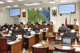В Хабаровском крае принят закон о безнадзорных животных