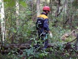 Спасатели ведут поиски женщины в районе поселка Селихино Хабаровского края