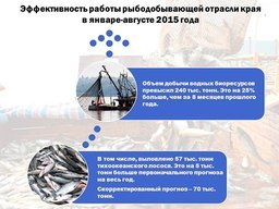 Правительство Хабаровского края сообщает об очень высоких темпа вылова рыбы в этом году