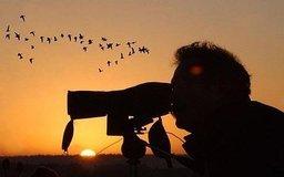 В первые выходные октября на нашей планете отмечаются Международные дни наблюдения птиц