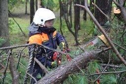 Спасатели и пожарные НА Сахалине ликвидируют последствия сильного циклона