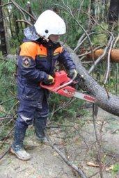 Спасатели и пожарные отрабатывают заявки населения по ликвидации последствий циклона