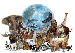 Всемирный день животных (World Animal Day), или Всемирный день защиты животных, отмечаемый во всем мире ежегодно 4 октября