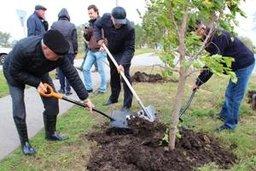3 октября Хабаровск очистили от мусора к приходу зимы: в городе прошел традиционный общегородской субботник