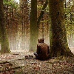 В лесах Хабаровского края потерялись уже 3 человека, отправившихся за грибами