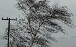 Ураганный ветер и очень сильный дождь ожидаются в Южно-Курильском и Курильском районах