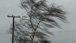 Сильный ветер и осадки прогнозируются в четырех районах Сахалинской области