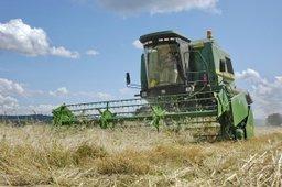 Вячеслав Шпорт поздравил жителей края с Днем работника сельского хозяйства и перерабатывающей промышленности