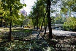 На Уссурийском бульваре, в районе конечноq остановки 25 автобуса, планируют высадить сквер с тысячелетними растениями