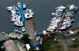 Александр Галушка: Свободный порт Владивосток раскрывает достаточно большой потенциал Дальнего Востока