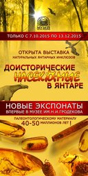 С 7 октября по 13 декабря в «Хабаровском краевом музее