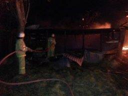 В Амурском районе ликвидировано загорание деревянного хозяйственного строения