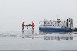 Спасатели продолжают искать хабаровчанина и остальных после аварии у берегов Курил