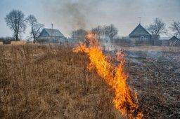В четырех районах края начались рейды по предотвращению сельхозпалов