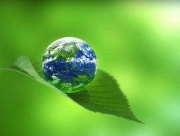 Хабаровский край стал победителем Всероссийского экологического фестиваля «Экодетство»