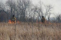 Силы и средства МЧС России привлекаются к тушению палов сухой растительности на территории Хабаровского края