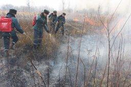 Для тушения сухой травы в Хабаровском крае и ЕАО задействованы авиация и пожарно-спасательные подразделения МЧС России