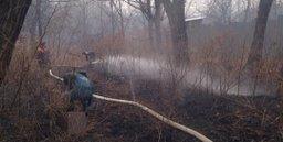 Силы и средства МЧС России ликвидируют очаги горения сухой травы в районе Хабаровска
